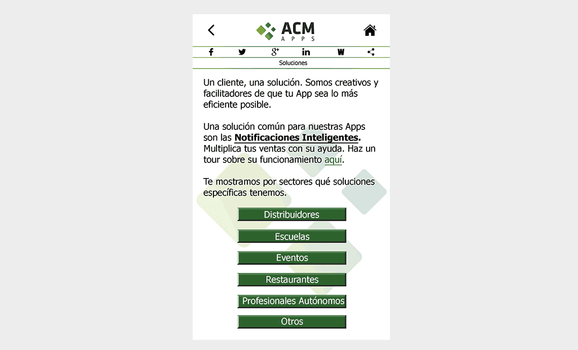 ACM Apps SL - Soluciones
